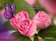 eKartki Kwiaty Pozdrawiam Cię,