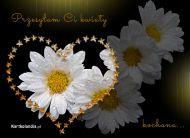 eKartki Kwiaty Przesyłam Ci kwiaty,