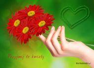 eKartki Kwiaty Przyjmij, te kwiaty,