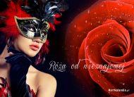 eKartki Kwiaty Róża od nieznajomej,