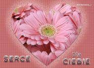 eKartki Kwiaty Serce dla Ciebie,
