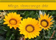eKartki Kwiaty S³onecznego dnia,