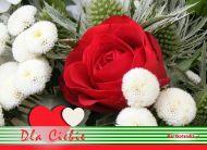 eKartki Kwiaty Specjalnie dla Ciebie,