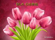 eKartki Kwiaty Tulipanki,