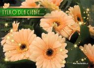 eKartki Kwiaty Tylko dla Ciebie,