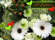 eKartki Kwiaty W prezencie,