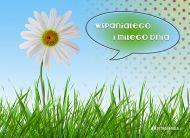 eKartki Kwiaty Wspaniałego miłego dnia,