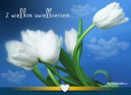 eKartki Kwiaty Z wielkim uwielbieniem,