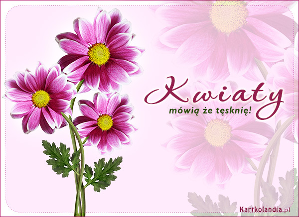 Kwiaty mówią że tęsknię