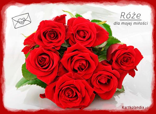 Róże dla mojej miłości