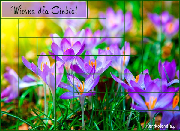eKartki elektroniczne z tagiem: Wiosna Wiosna dla Ciebie,