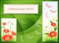 eKartki elektroniczne z tagiem: Kartka pozdrowienia Cudownego dnia!,
