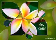 eKartki elektroniczne z tagiem: Kartki kwiaty online Cudowny kwiat,