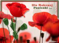 eKartki elektroniczne z tagiem: Darmowe e-kartki kwiaty Dla Makowej Panienki,
