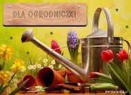 eKartki Kwiaty Dla Ogrodniczki,
