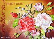 eKartki Kwiaty Dobrze ¿e Jeste¶!,