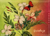 eKartki elektroniczne z tagiem: Darmowe e-kartki kwiaty Dziękuję,