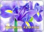 eKartki Kwiaty Kartka z życzeniami,