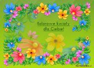 eKartki Kwiaty Kolorowe kwiaty,