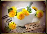eKartki Kwiaty Kuracja dla zdrowia,