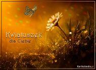 eKartki Kwiaty Kwiatuszek,