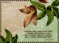 eKartki Kwiaty Kwiaty sk³adaj± ¿yczenia,