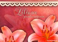 eKartki elektroniczne z tagiem: Kartka pozdrowienia Liliowe pozdrowienia,