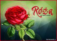 eKartki Kwiaty Miłosna róża,