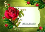 eKartki elektroniczne z tagiem: Darmowe e-kartki kwiaty Miłosne życzenia,