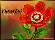 eKartki elektroniczne z tagiem: Darmowe e-kartki kwiaty Pamiętaj o mnie,