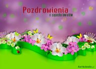 eKartki elektroniczne z tagiem: Pozdrowienia Pozdrowienia o zapachu kwiatów,