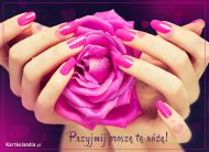 eKartki Kwiaty Przyjmij proszê tê ró¿ê!,