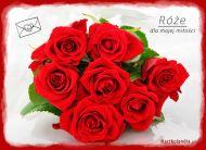 eKartki Kwiaty Ró¿e dla mojej mi³o¶ci,