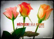 eKartki Kwiaty Różyczki dla Ciebie,