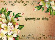 eKartki Kwiaty Têskniê za Tob±,