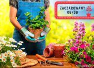eKartki Kwiaty Zaczarowany ogród,