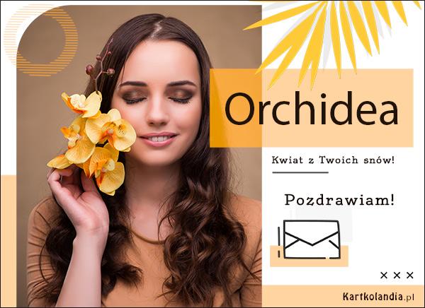 eKartki elektroniczne z tagiem: Pozdrowienia Pocztówka online - Orchidea,