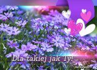 eKartki Kwiaty Dla takiej jak Ty!,