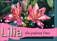 eKartki Kwiaty Lilia dla pięknej Pani...,