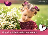 eKartki Kwiaty Spójrz na kwiaty,