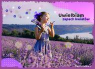 eKartki Kwiaty Uwielbiam zapach kwiatów...,