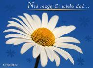 eKartki Kwiaty Nie mogê Ci wiele daæ...,
