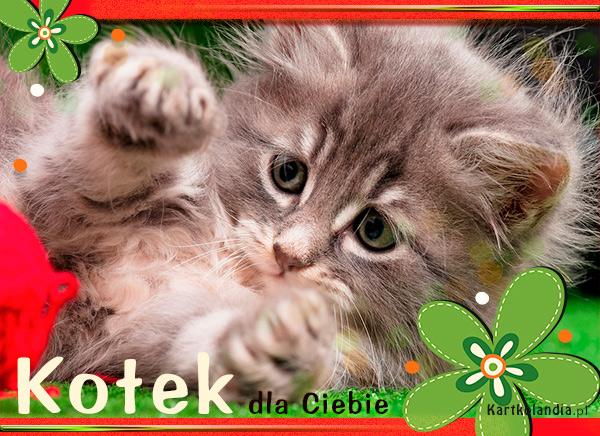 eKartki Dzień Dziecka Kotek dla Ciebie,