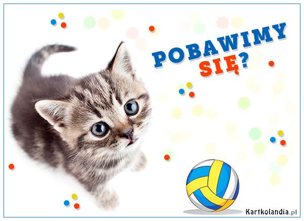 eKartki elektroniczne z tagiem: Kotek Pobawimy się?,