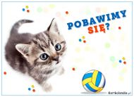 eKartki elektroniczne z tagiem: e-Kartka z kotem Pobawimy się?,