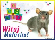 eKartki Dzień Dziecka Witaj Maluchu!,