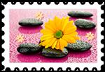 ¯ó³ty_kwiat
